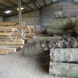processed timber 1