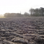 ploughed field 2