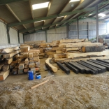 processed timber 3